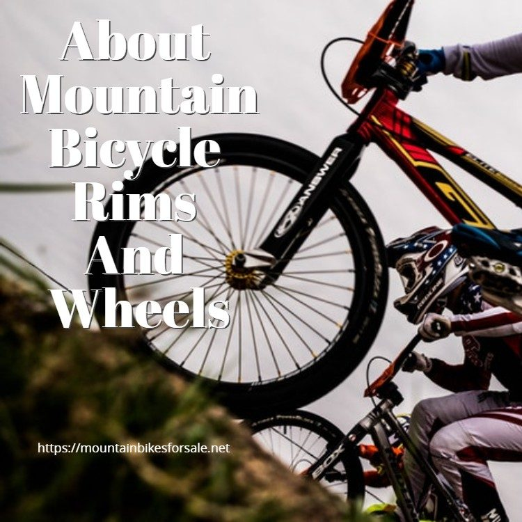 About Mountain Bicycle Rims And Wheels