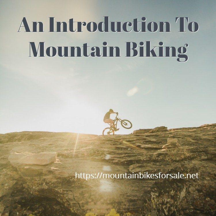 An Introduction To Mountain Biking