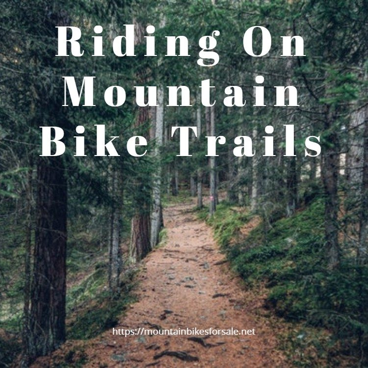 Riding On Mountain Bike Trails